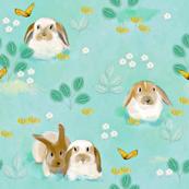 Bunnies and Butterflies