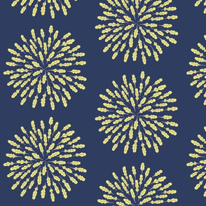 Arugula (rocket) fireworks (rockets)