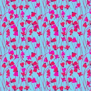 Flowering Cyclamen #5