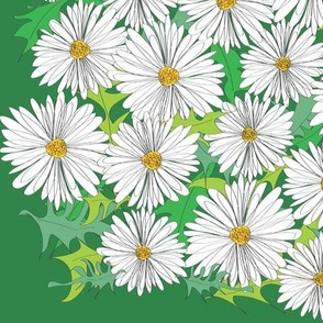daisy patches