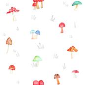 Mixed Mushroom
