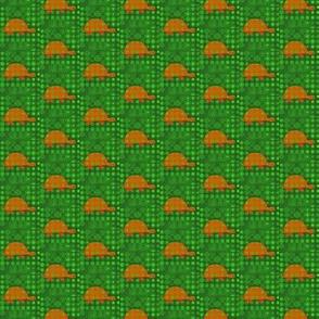 Orange Turtles Green Grass
