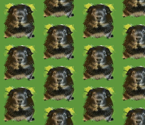 guinea pig with green background