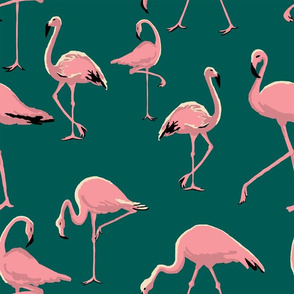 Flamingos Medium Scale