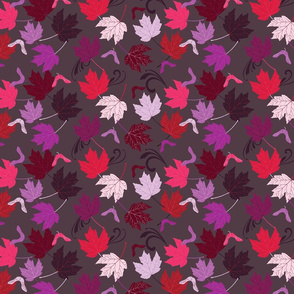 Maple Leaf Study