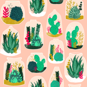 terrarium // sweet little houseplants plants cactus indoor pastel pink succulents