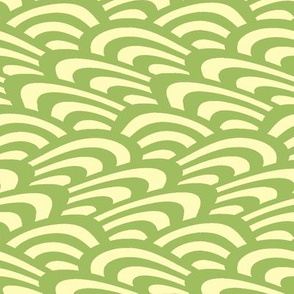 wavy scallop in green tea