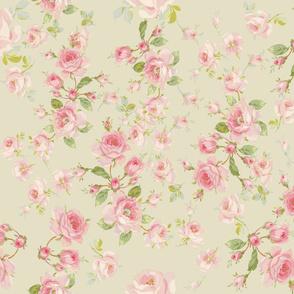 Saint Colette June Roses in khaki