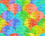 Rrainbow-scales_2_thumb