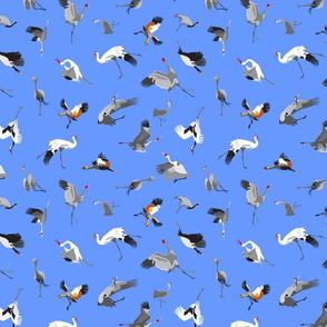 A Family of Cranes