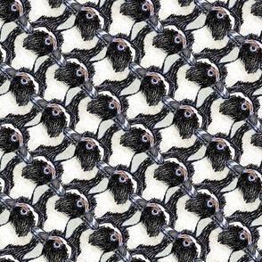Penguin s...