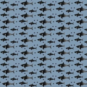 shark attack - MINI PRINT - elvelyckan