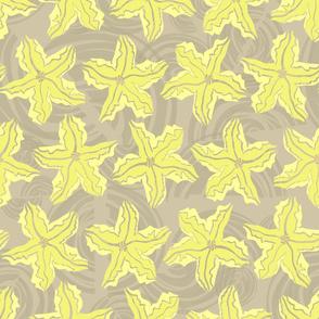 Zucchini Garden Sharp Yellow Flower