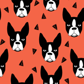 Boston Terrier - Coral Background (Smallest Version) by Andrea Lauren