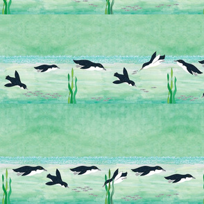 penguinborder1