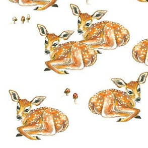 Fawns and Mushrooms