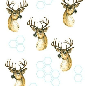 Deer and Hexagons