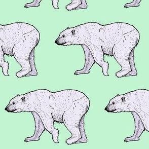 Polar Bear - Mint + Purple