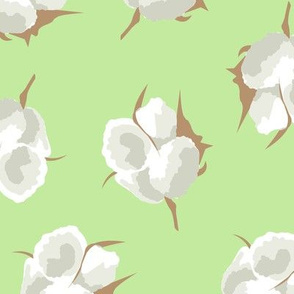 Cotton Blossom Toss in Key Lime
