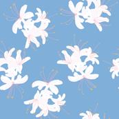 Honeysuckle Bouquet in Carolina Blue