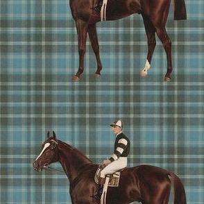 racehorseblueplaid
