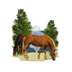 Horse - 006