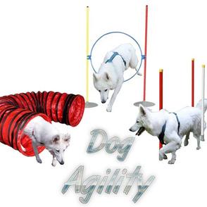 Agility - 001