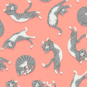 Grey Cats on Peachy Pink