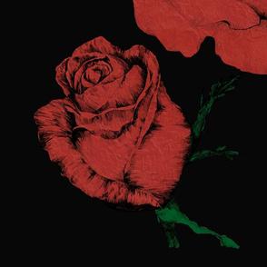 Red Roses Black