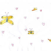 butterflies & hearts