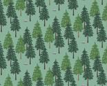 Evergreenwallpapper_thumb