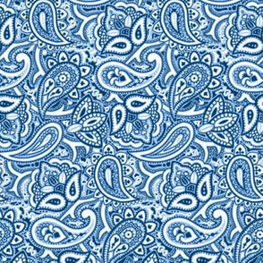 Persnickety Paisley ~ Jasperware, Lonely Angel Blue and White