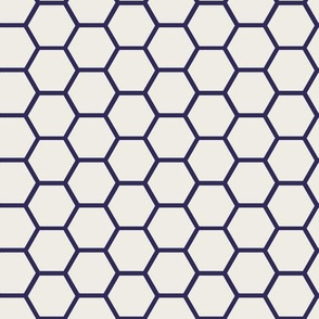 Envelop Honeycomb in Mailman