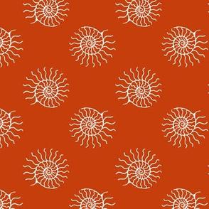 nautilus spin #c63e0c