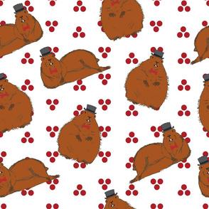 Dapper Groundhog