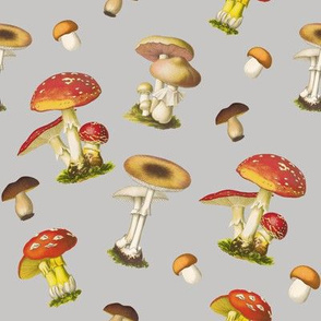 Super Mushrooms