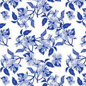 China Blue Dogwood Blossoms