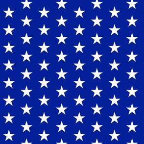 Perfect American Flag Stars