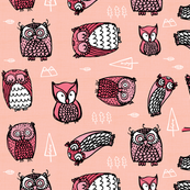 owls on pink