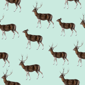 Deer Herd on Seafoam