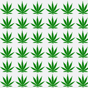 420 pot leaf - rolling papers