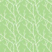 Spring Branches, Grassy Green
