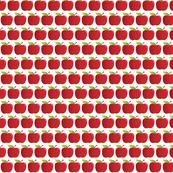 Shiny Delicious Apple