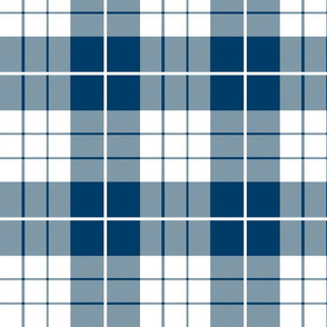 Traditional Plaid ~ Lonely Angel Blue and White
