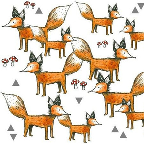 Foxes + Triangles + Mushrooms