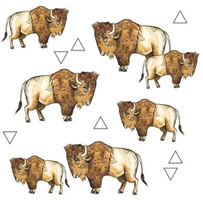 Buffalo + Triangles