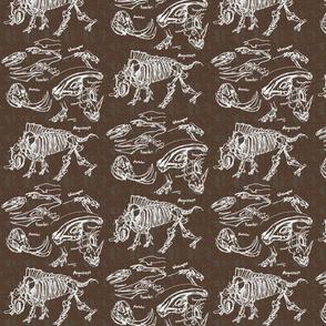 dinosaur sketches khaki