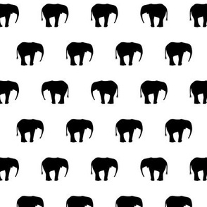 Elephants Black And White