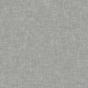 Solid Linen in Gray
