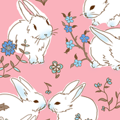 White bunnies with pink